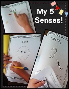Super Cute 5 Senses Book! + a popcorn extension activity.