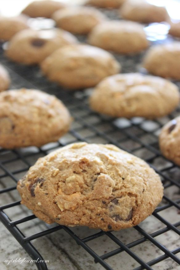 Gluten-Free Compost Cookies Recipe