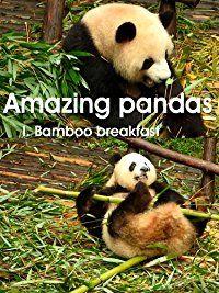Giant panda - bamboo breakfast