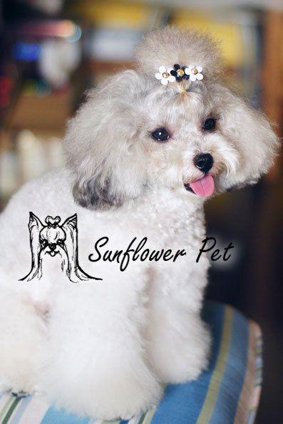 Товары для домашних животных ручной работы дизайнер собака луки стрижка собак волос луки собачка Pet подарки XiaoZou CCB акриловые цветок клип