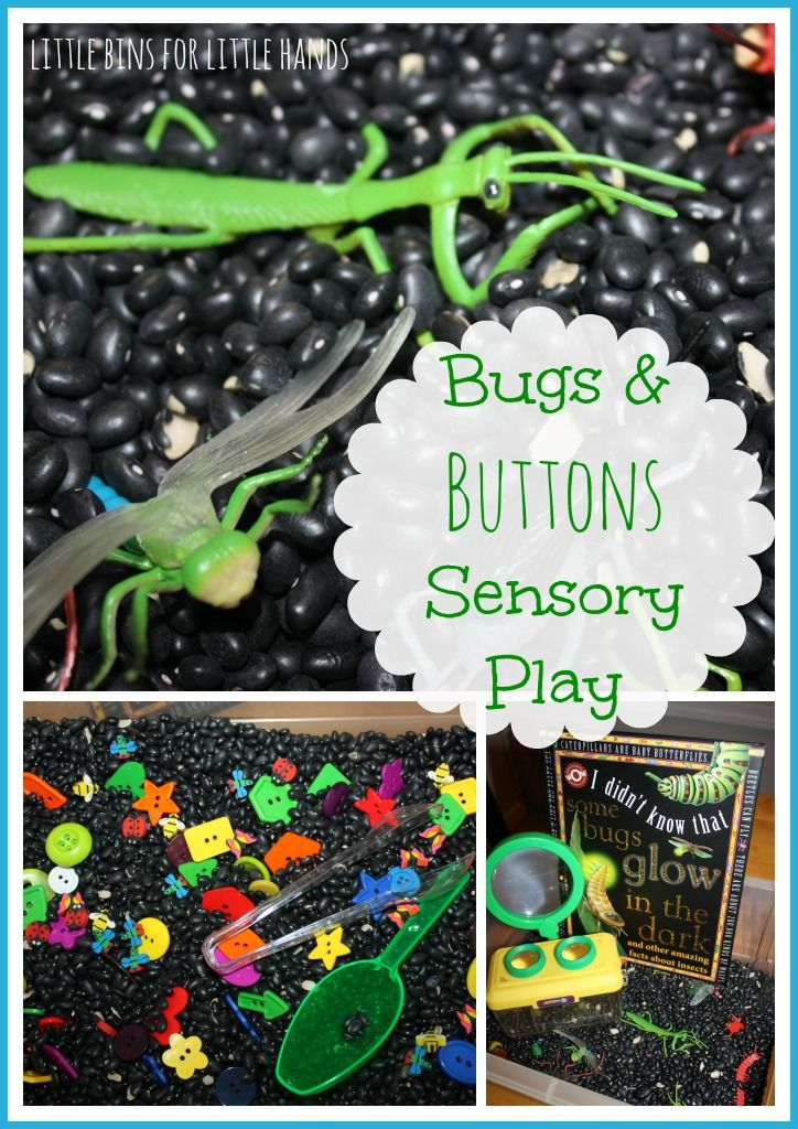 Play With Patterns Prints And Lots Of Accessories For: Bugs Sensory Bin Play Black Beans Buttons Activity