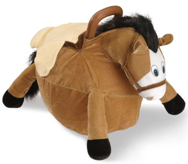 Bouncy Horse Ball Am I Too Old For This They Re