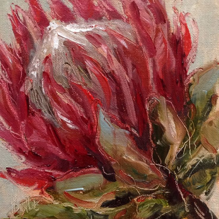 """Protea for Ross #143"" daily painting by Heidi Shedlock"