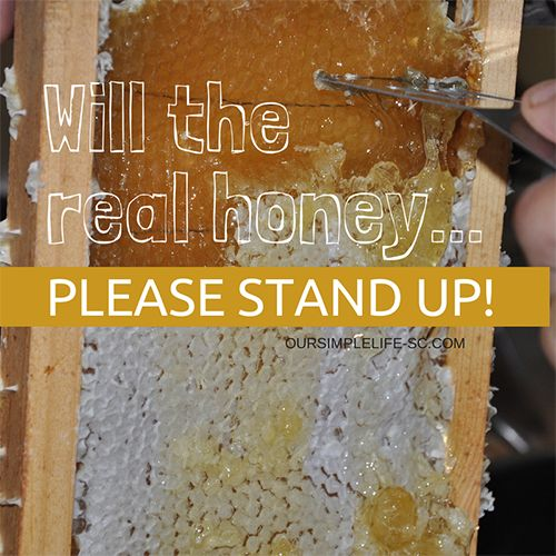 Will the real honey please stand up! - There is nothing like that first taste, or to suck on a piece of honeycomb and extract all the real honey from its waxy centers, it's like heaven in a bee hive! http://oursimplelife-sc.com