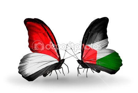 Butterflies with Monaco, Indonesia and Palestine flags on wings — Photo