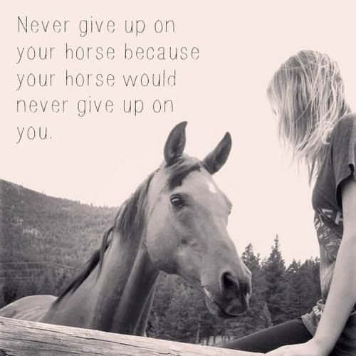 """""""Never give up on your horse because your horse would never give up on you."""""""