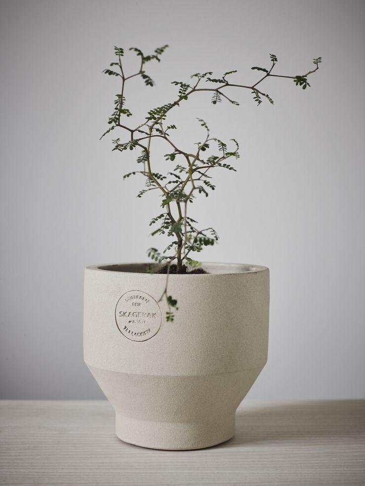 Edge Pot . Design by Stilleben for Trip trap