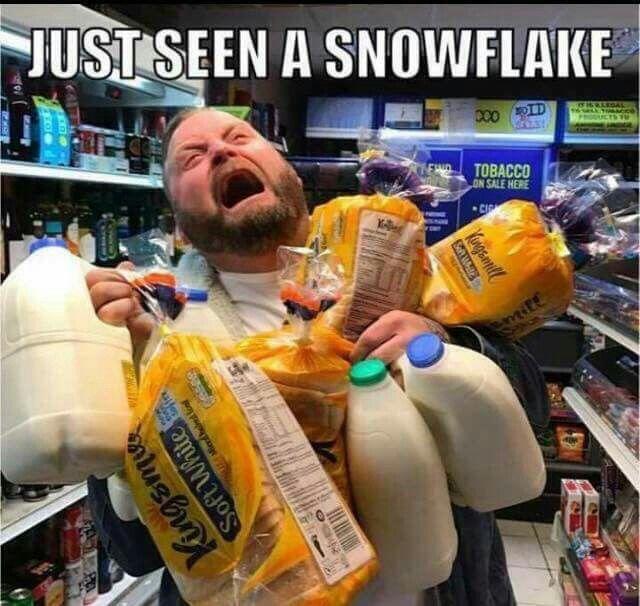 Snow Survival