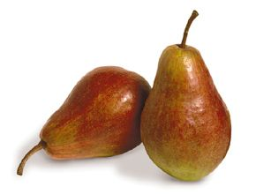 Pear Red Max Bartlett