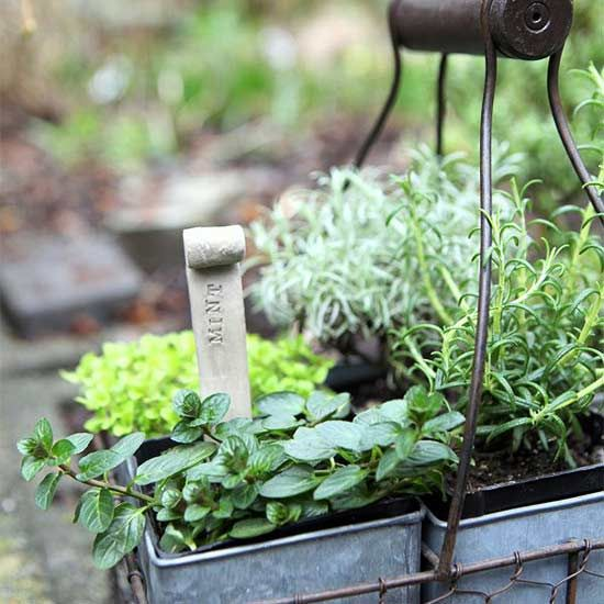 Mosquitoes have the habit of ruining evenings outdoors, but you can keep the patio or porch party going strong with these natural ways to banish those pesky bugs. Add an herb garden with plants such as lemon balm, basil, and mint that discourage mosquitoes. Try DIY citronella candles, turn on a fan to keep guests cool and blow mosquitoes away, and let spiders stay so that they'll snack on pesky mosquitoes.