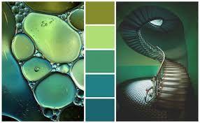 Risultati immagini per colori pareti verde acqua