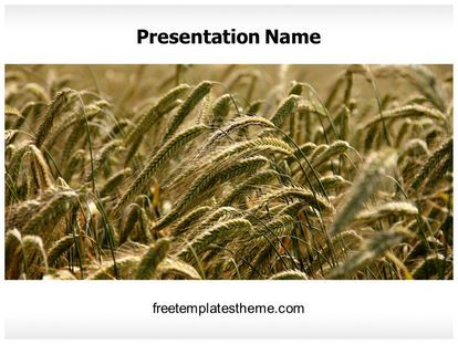 24 best free agriculture powerpoint ppt templates images on get free ripe wheat field powerpoint template and make a professional looking powerpoint presentation in ripe wheat field powerpoint template ppt template toneelgroepblik Image collections