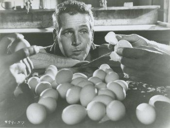 Paul Newman in Cool Hand Luke directed by Stuart Rosenberg, 1967