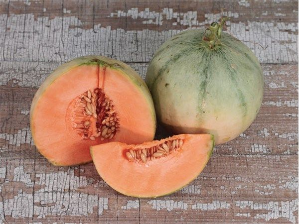 A famous, superb heirloom, Charentais Melon. A French 2-3 lb. melon with light grey-green skin. Super Sweet Flesh.