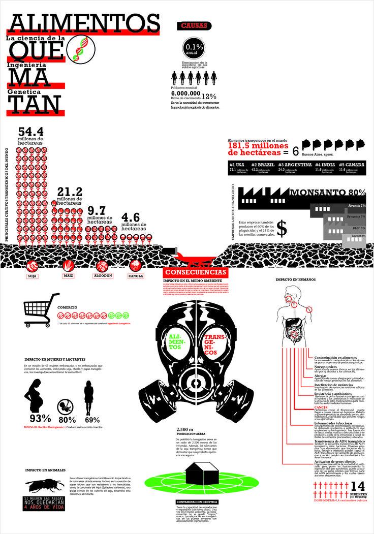 Infografia alimentos transgenicos