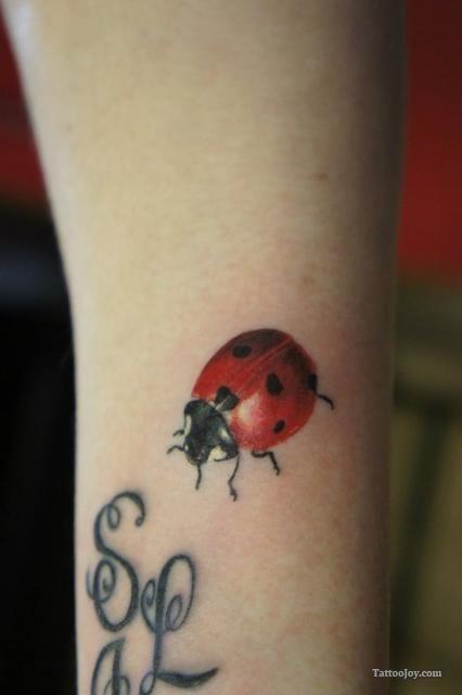 Ladybug Tattoos---nice work---I would like 2 to symbolize friendship