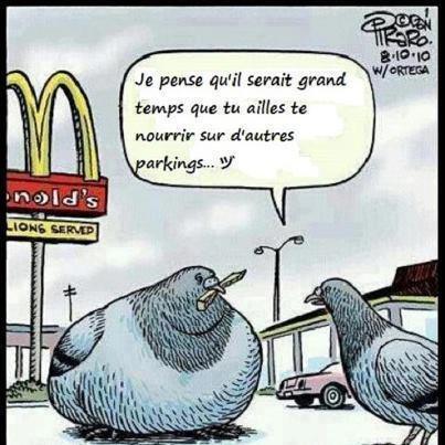 Quand MacDo nous vante sa nourriture saine, ne nous prend-il pas tous pour des pigeons ?