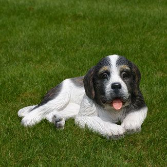 """St. Bernard Puppy-Life Size St. Bernard Puppy Statue 11""""H. This realistic portrait of the St. Bernard puppy stands poised to please your guests.  Made of chip resistant fiberglass for indoor or outdoor use."""