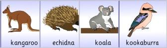 Australian Animal Craft Activities