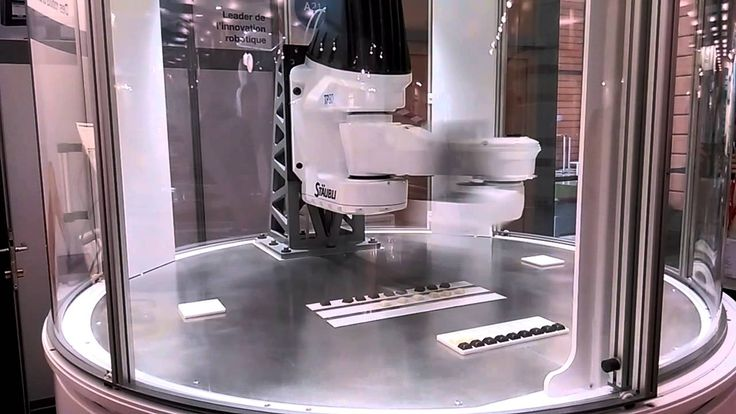 Innorobo - Stäubli Robot - Lyon 2015
