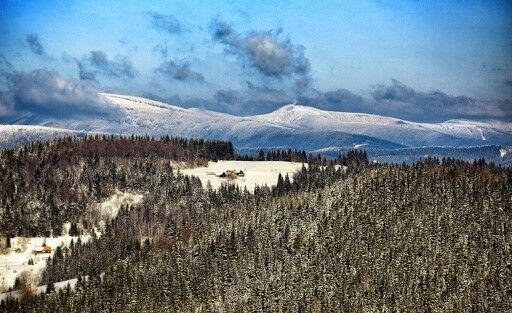 February, Western Carpathians