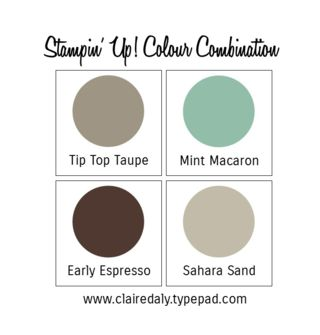 Stampin' Up! Mint Macaron and Tip Top Taupe with existing colours. Click the image to see this color combination used on a card.
