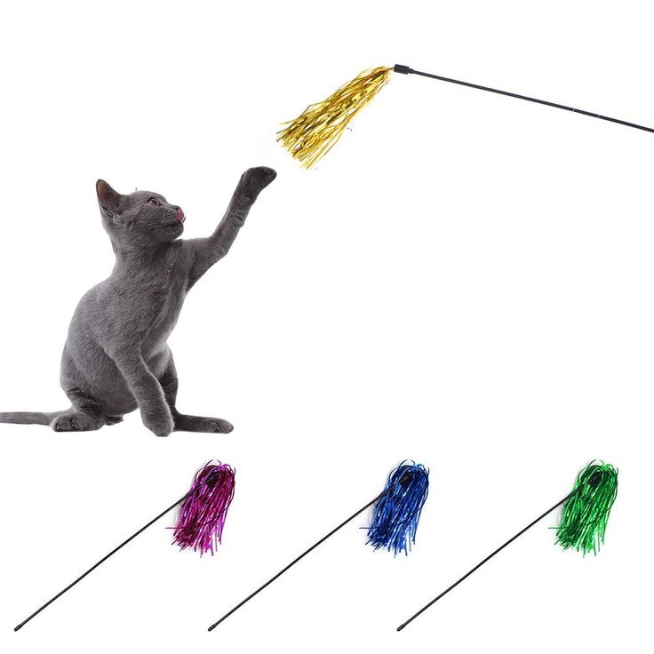 1533 best cat toys images on pinterest kittens kitty for Retractable cat wand