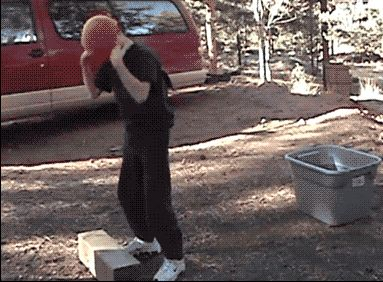 The Best Of Pranks In GIFs