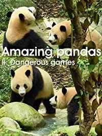 Giant panda - dangerous games