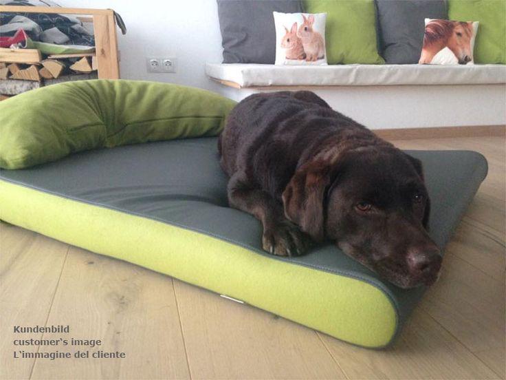 Maya liebt ihre neue Hundematte. Maya loves her new dog mattress. Maya ama il suo nuovo materasso cane. http://www.pet-interiors.de/de/hundematte_pg3