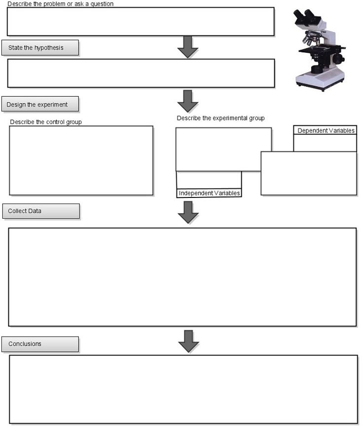 Worksheets Scientific Method Worksheet High School 1000 ideas about scientific method video on pinterest if you have an open ended lab this flow chart can help students organize