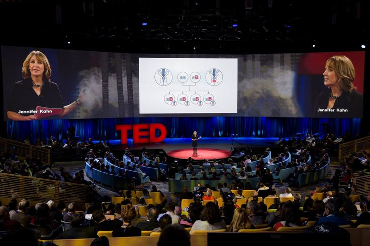 #TED 2016 - Slides designed by us  on the big TED stage! #storytelling #illustration