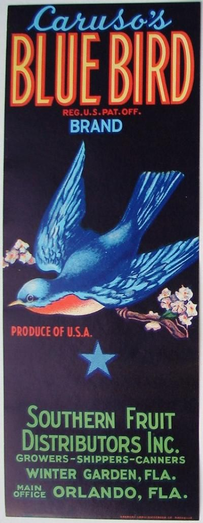 3.25X8.5 BLUE BIRD Vintage Winter Garden Florida Citrus Crate Label