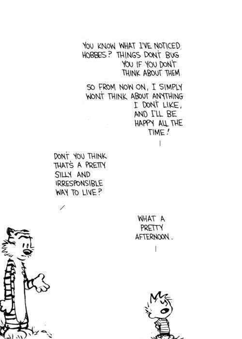 """""""I won't think about anything I don't like & I'll be happy all the time"""" -Calvin & Hobbs"""