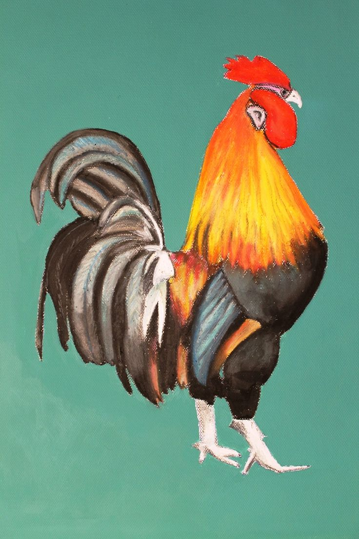 Rooster series (3) Oil pastels/acrylic on canvas  2014 Limited prints available