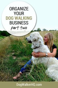 Get Organized for Your Dog Walking Business Now - Part 2