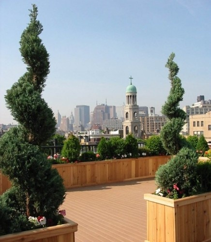 traditional landscape by Amber Freda Home & Garden DesignGardens Ideas, Curves Topiaries, Traditional Landscapes, Rooftops Ideas, Nature Design, Gardens Planters, Amber Freda, Gardens Design, Roof Gardens