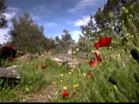 Il sabato del villaggio Giacomo Leopardi Foà - YouTube