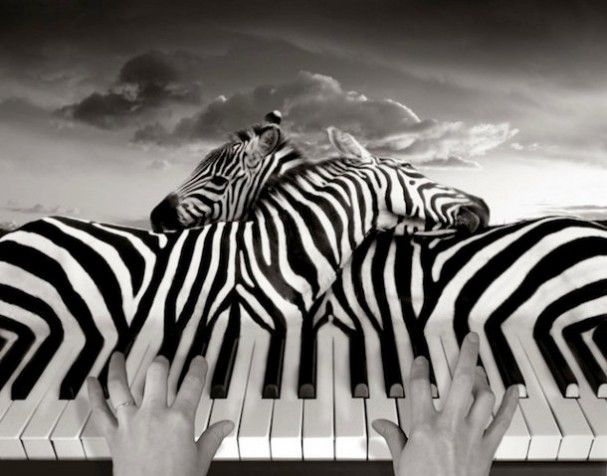 surrealistische-fotomanipulatie-thomas-barbey