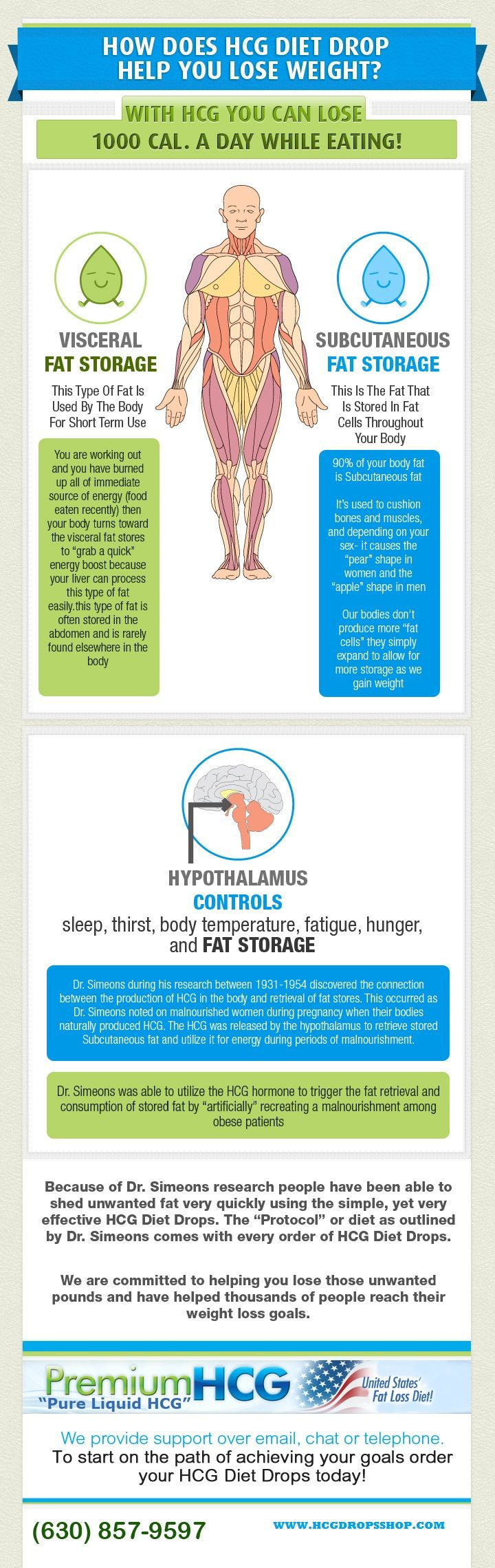 An info graphic about How HCG Diet Drops helps in reducing the unnecessary fat from the human body. Includes information about types of Fat Storage and how our body uses it. Also Included about Dr.Simeons Research on HCG Weight Loss.