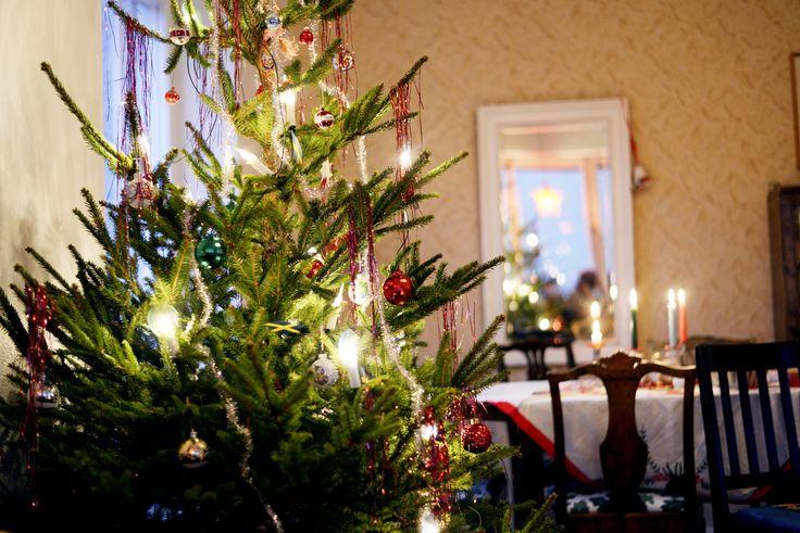 Elsa Billgren: prepping for Christmas