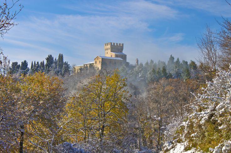 Carassai in the Piceno Area of Le Marche - part II