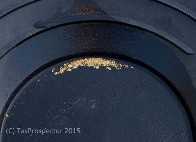 Panned alluvial gold, Tasmania.