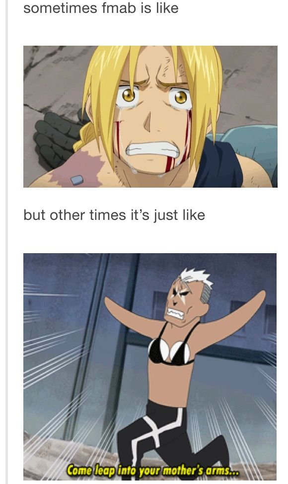 fullmetal alchemist tumblr posts - Google Search