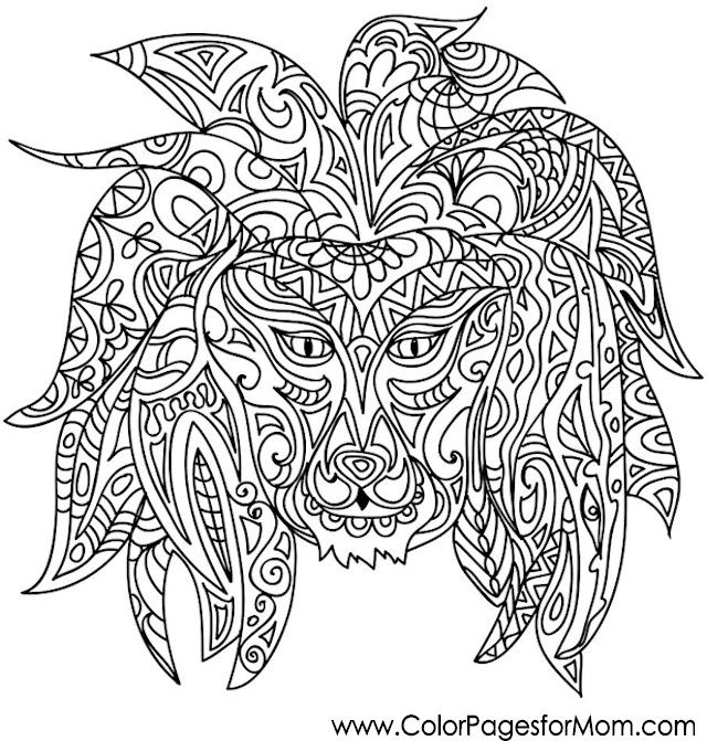 animals 36 advanced coloring pages
