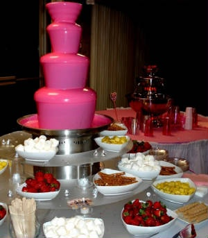 SERIOUSLY?!?! a PINK chocolate fountain? ummm, rethinking a 30th bday party just so i can have one! LOVE IT