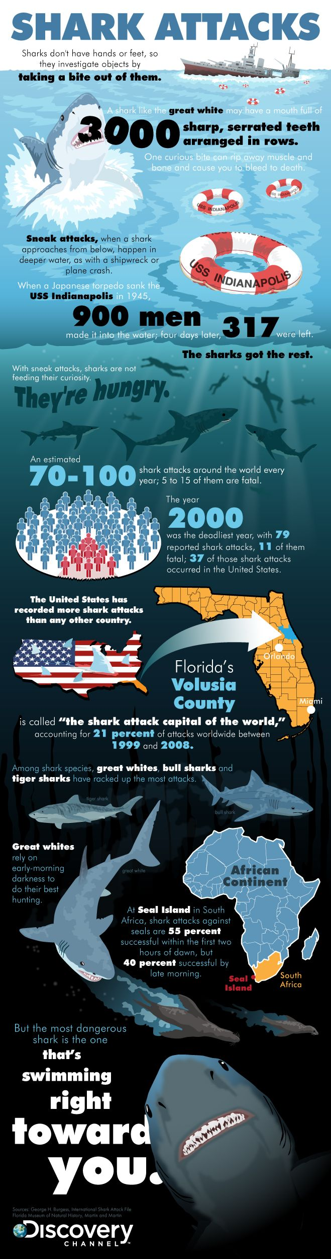 Shark Week 2013: A Tale of Tails, Fins, Shark Attack Infographic