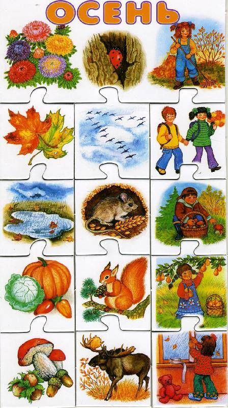 Иллюстрация 7 из 9 для Времена года. Развивающая игра. | Лабиринт - игрушки. Источник: РИВА