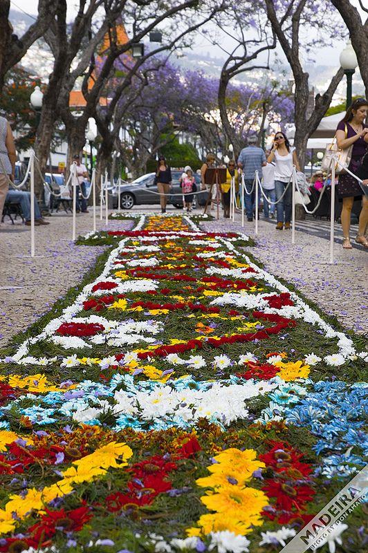 Flower Carpet made by the Casa do Povo Fajã da Ovelha, #Madeira. Sponsored by Porto Bay. 2013. Flower Festival, Festa da Flor, Funchal, Madeira Island, Portugal