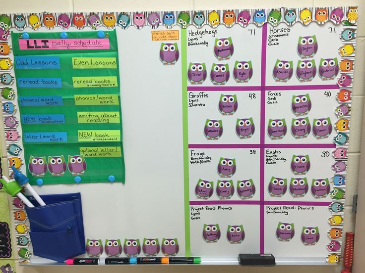 LLI {Leveled Literacy Intervention} Schedule Posted & Group Management:  Each Student has his/her name on an owl.  Whoever's owl is on top will sit next to me that day (for extra reading support + running record).  I rotate the owls every other day, so students sit next to me two days in a row (first an odd lesson day - then an even lesson day).